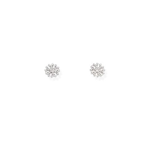 Earrings Snowflake Zircons