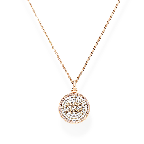 Necklace Zircons Zodiac Aquarius