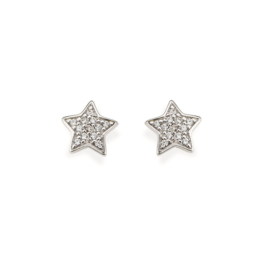 Sterling Silver Earrings and white zirconia